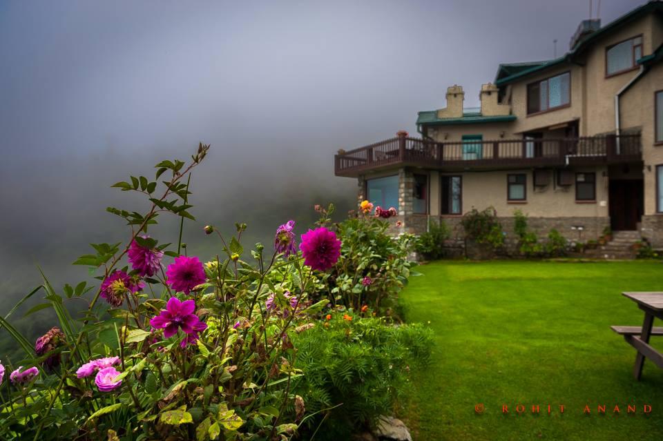Flowers blooming in Soulitude garden