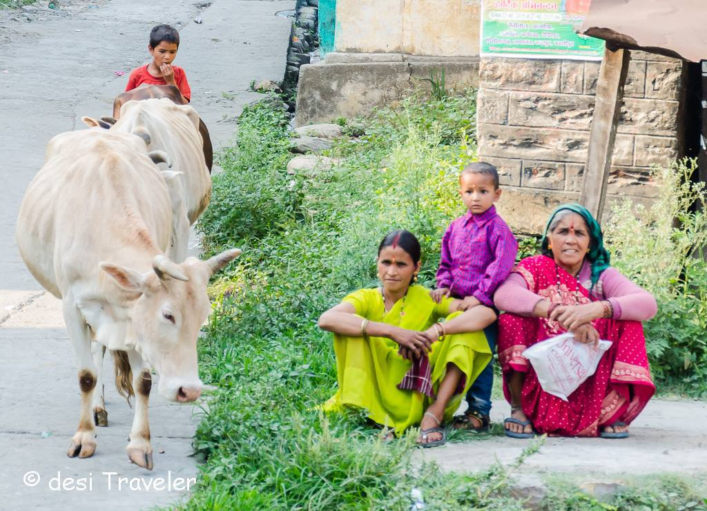 holy-cow-and-women-in-kumaon-india