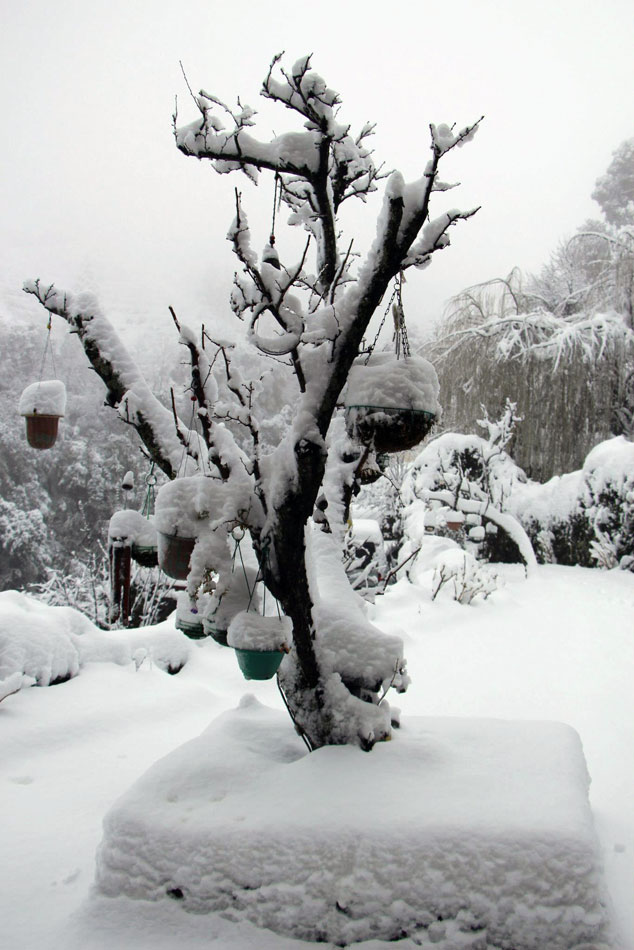 Snow at Soulitude